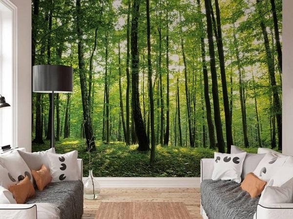 Dit fotobehang van een 's zomers bos brengt een prachtige rustieke sfeer in je woonkamer of slaapkamer. Het helpt je om te rust te komen en even lekker weg te dromen na een hectische dag.