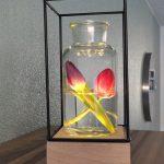 Vaaslamp - Vaas met LED Verlichting