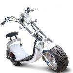 Elektrische Scooter - Duurzaam Rijden - Met Blauw Kenteken