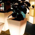 RGB LED Bloempot