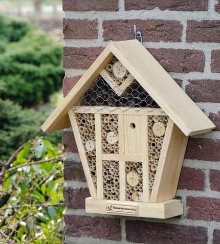 Insectenhotel – Geef Insecten Een Fijn Huisje