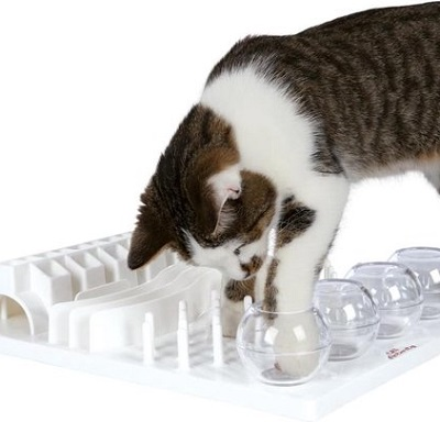 Cat Activity Fun Bord – Kattenspeelgoed