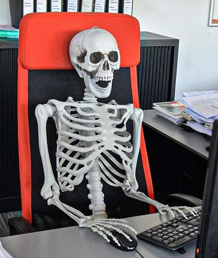 Halloween Skelet – Levensgroot