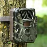 Full HD Wildcamera met Time Lapse en Nachtzicht - incl. Statief