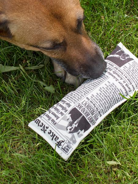 Fake news krant 'Canine Edition' hondenspeeltje.