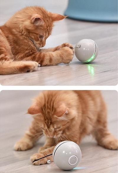 Interactief Rollende Bal – Kattenspeeltje