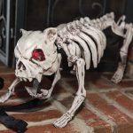 Skelet Hond met Licht en Geluid
