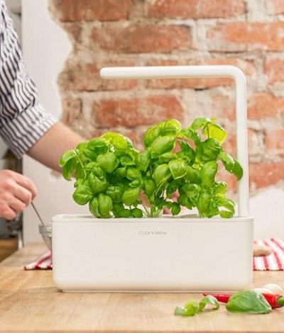 Binnentuin Click and Grow Smart Garden met automatische belichting en bewatering.