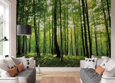 fotobehang-zomer-bos