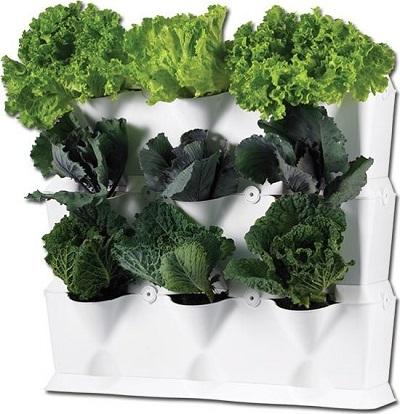 Super makkelijk een verticale tuin aanleggen met deze Minigarden Vertical. Verander iedere muur of schutting in een verticale tuin. Kan zowel binnen als buiten gebruikt worden.
