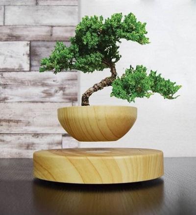 Zwevende bloempot met een bonsaiboompje op een houten tafel.