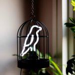 Neon Vogel in een Kooitje - Tafellamp en Hanglamp