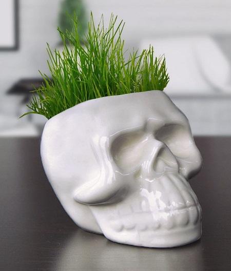 Skull Grashoofd