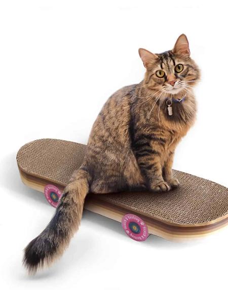 Krabpaal in de vorm van een skateboard met een kat erop.