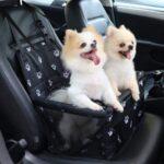 Autostoel Hond - Incl Opvouwbaar Voerbakje en Borstel