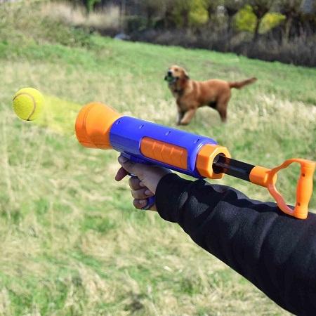 Hondenbal Schieter