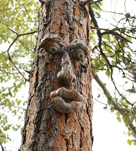 Boomgezicht – Leuke Tuindecoratie