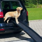 Opvouwbare Loopplank Voor Je Hond